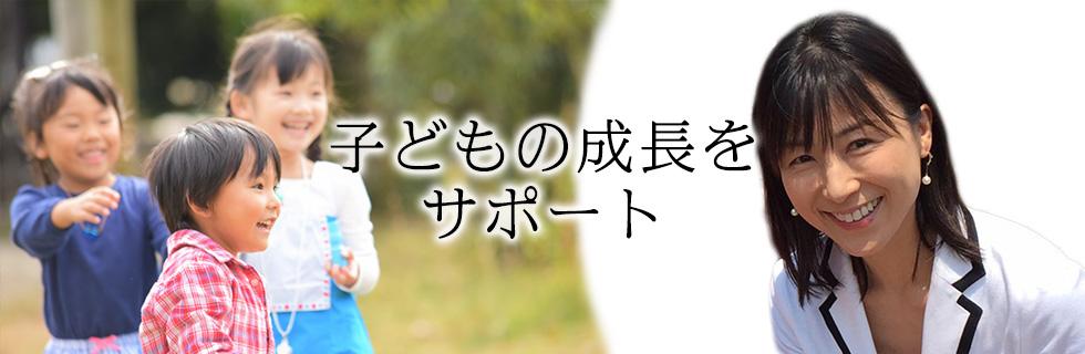 民進党広島県第3区総支部長 民進党広島県連副代表